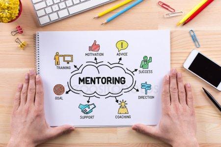 La 11Mil pone en marcha su Programa de Mentoring 2019 para profesionales junior